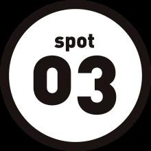 spot03
